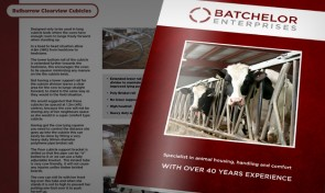 Batchelor Enterprises design by Amazing Creative