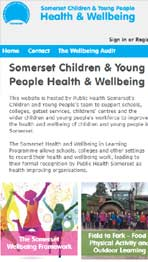 Somerset Health in Schools website design by Amazing Creative